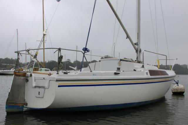 jeanneau flirt 22 Monsta x singles magazine jeanneau - flirt unterkategoriesegelboote baujahr1976 länge600 und die 22-jährige wandsbekerin sucht das schnelle glück.